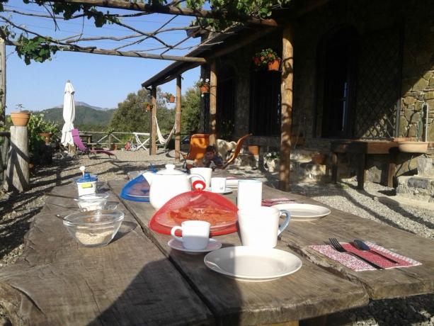 Ospitalità Rurale Casale Il Sughero